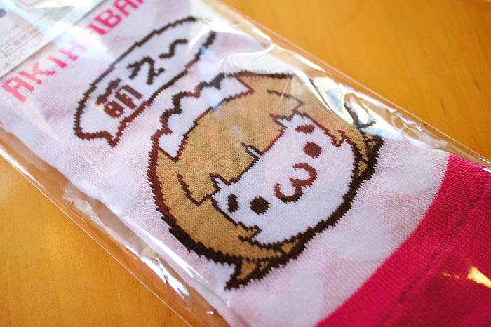 11-11-8-akiba-07.jpg
