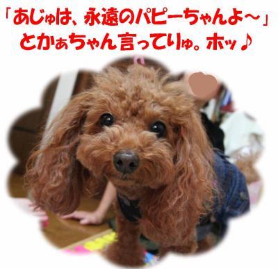 090615_convert_20090906235611.jpg