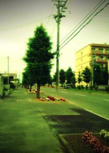20110723-9jpg.jpg