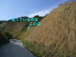 CIMG3320.jpg