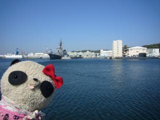 ばぶちゃん横須賀港を眺めて…
