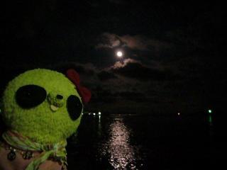 お月さまがキレイでした