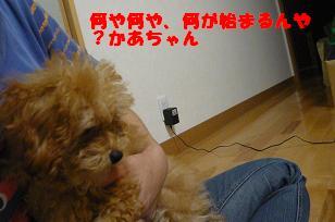 ブログ用 356