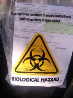 bio hazard2