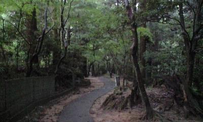 西山興隆寺 5