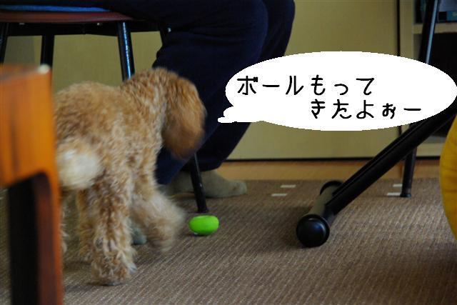 ゴハン風景 020 (Small)