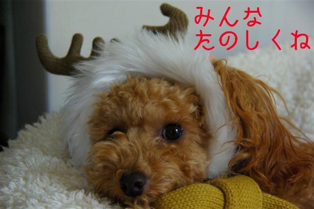 クリスマス 003 (Small)