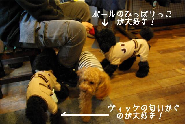 2007.12.29ティーダ 086 (Small)