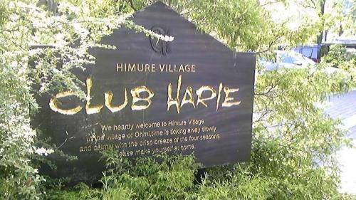 クラブハリエ。