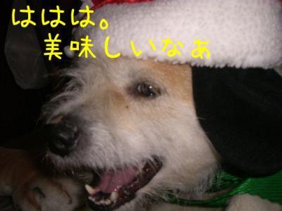 OvzAO9B_.jpg