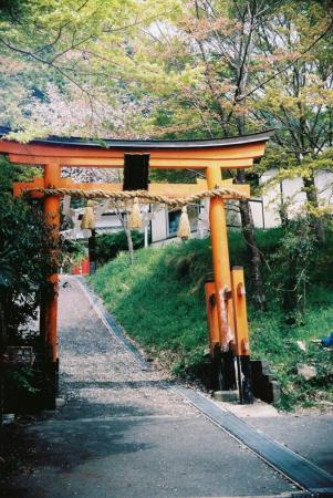 kiyotaki 1104a