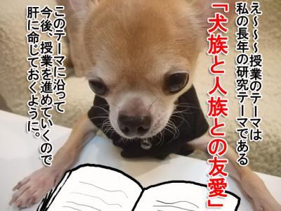 46-3_20091021022235.jpg