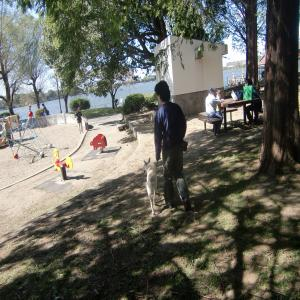 CIMG2097_convert_20091013154022.jpg