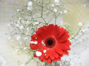 卒団式・花