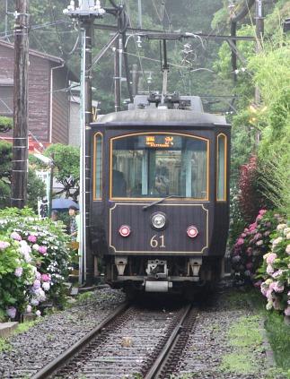 2011061909.jpg