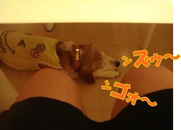 11_09_04_14.jpg