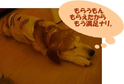 11_09_09_01.jpg