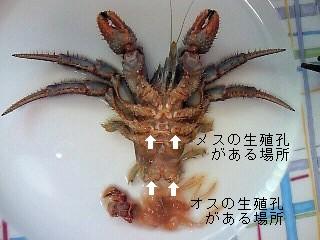 2011_0410_02.jpg
