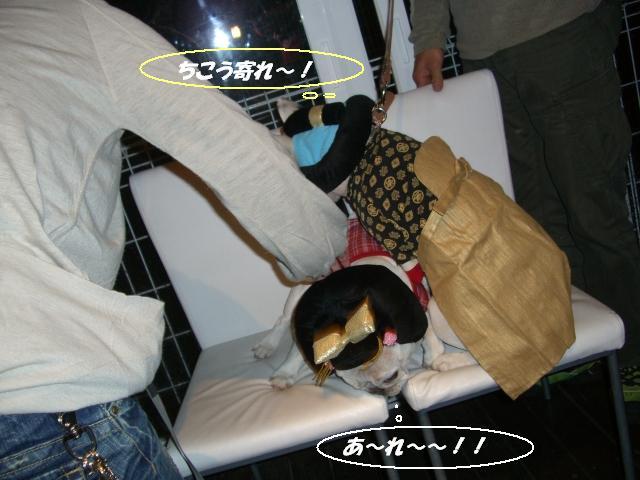 ☆2007 12 29年忘れフレブル忘年会 016