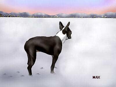 MAX20-1.jpg