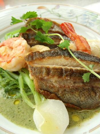 イルポルト魚