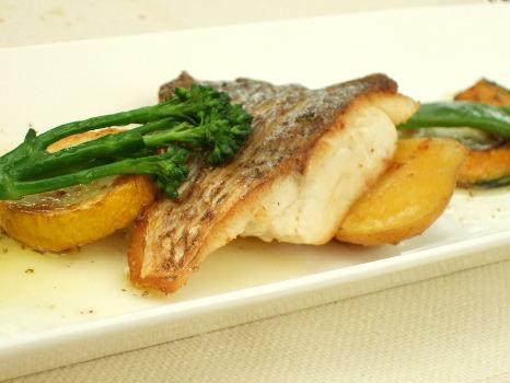 プラトー魚