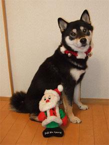 Xmasのいたずら(2007/12/24)