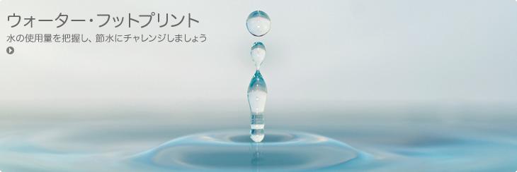 m1_enviro-water-footprint_S11-jp.jpg