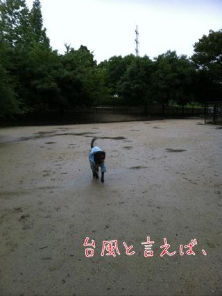 台風1日目の1