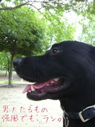 台風2日目