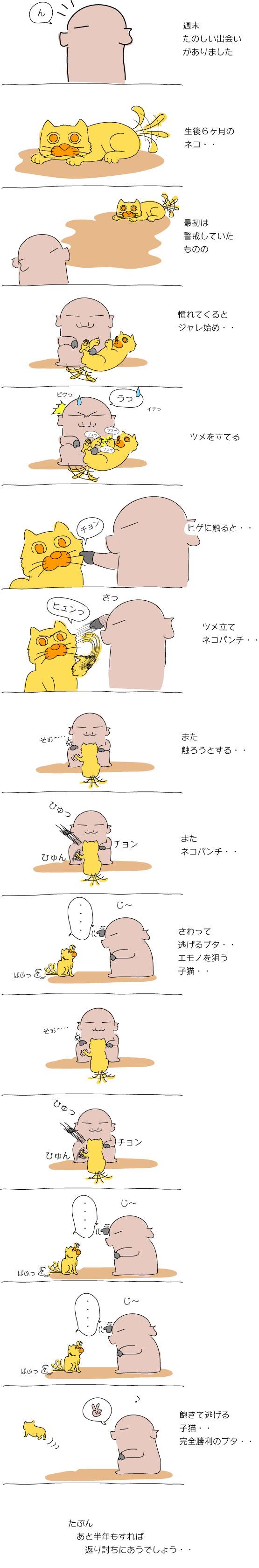 ネコパンチ