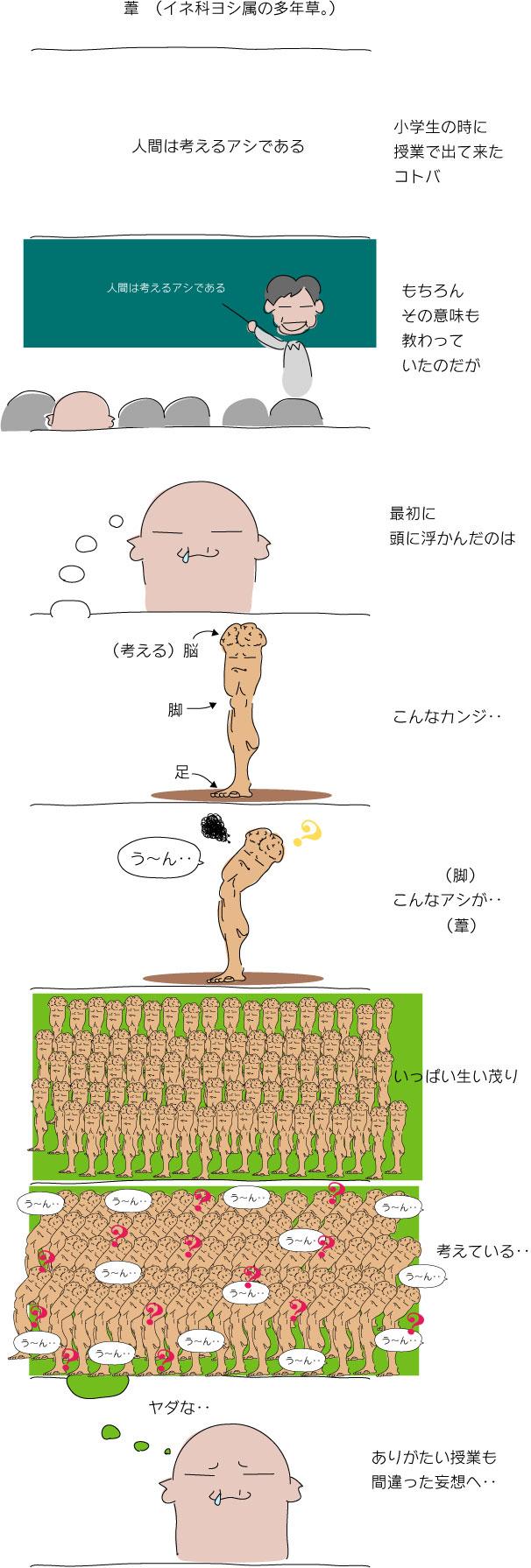 人間は考える葦である