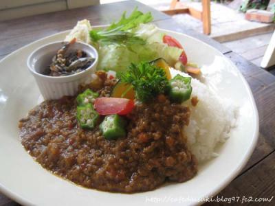 Cafe shibaken◇Aランチ(ベジキーマカレー)