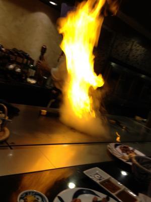 fire_convert_20120410235133.jpg