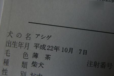 120316-4.jpg