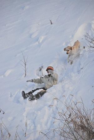 急な崖を滑る人と犬