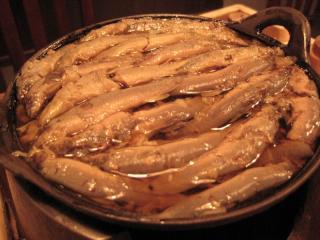 20111109_komagata_dojo.jpg
