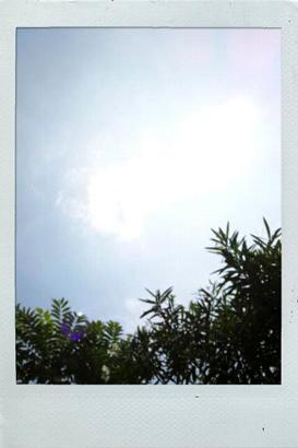 110802-1.jpg
