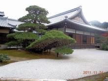 20111284.jpg
