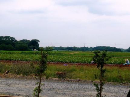 09-09-22 畑