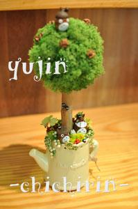 yujin1