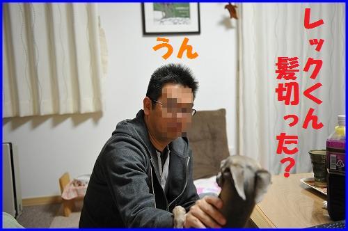 DSC_3210.jpg