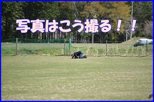 DSC_3472.jpg