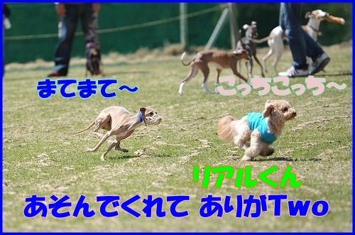 DSC_3576_20110429000146.jpg