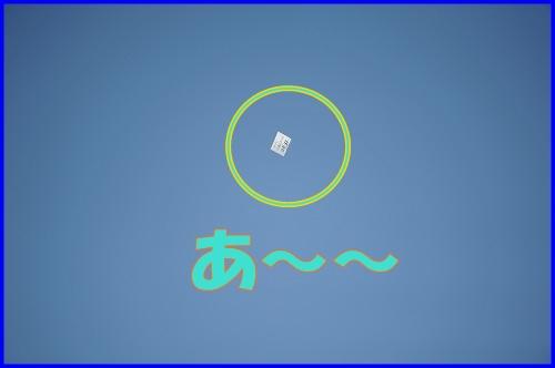 DSC_3655_20110429000445.jpg