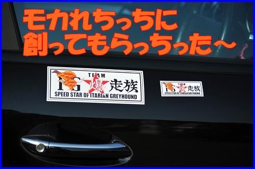 DSC_3730.jpg