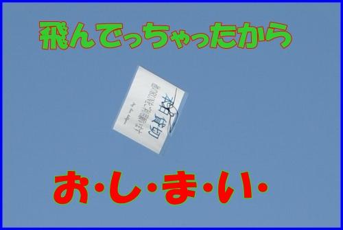 DSC_3750_20110429000445.jpg