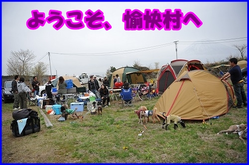 DSC_3954.jpg