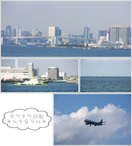 10 20-13 2009