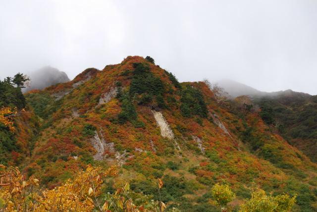 091010雨飾山・笹ヶ峰16